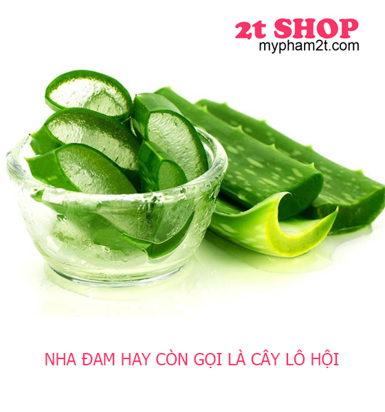 Gel-tri-mun-lo-hoi-natural-spa-2tshop